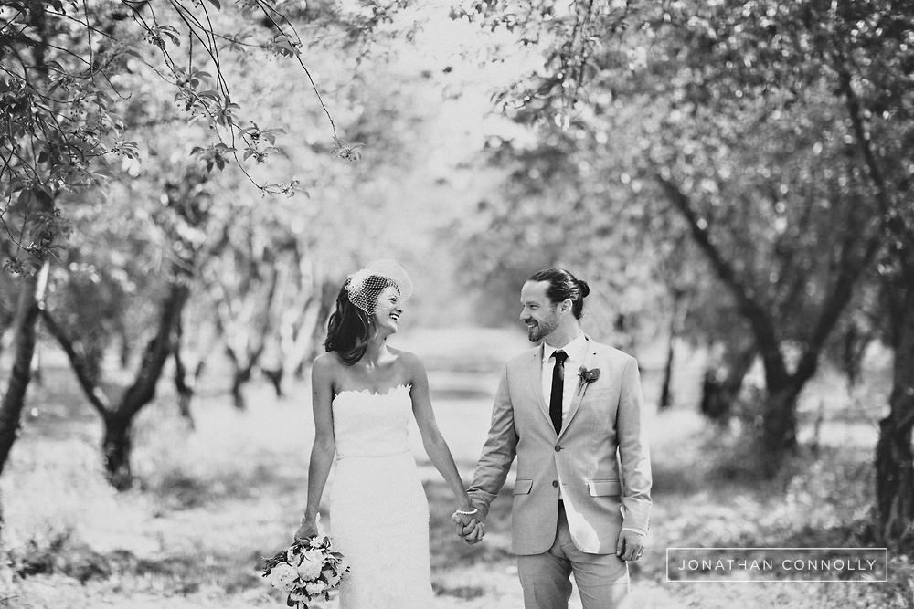 vinyard wedding photography